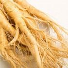 Suma Root Powdered Extract