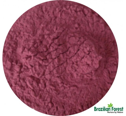 Acai Powdered Extract 10%