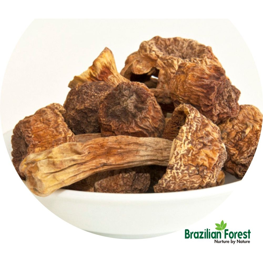 Agaricus blazei Mushroom Dried
