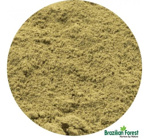Boldo Leaves Powder